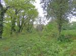 grimaud-terrain-constructible-proche-du-village0-070416-143727p1060800