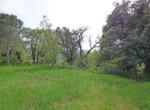 grimaud-terrain-constructible-proche-du-village0-070416-143727p1060801