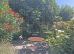 190725 trädgård 2